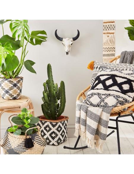 Apvalus jūržolių krepšys su įdėtu monstera augalu namų interjere