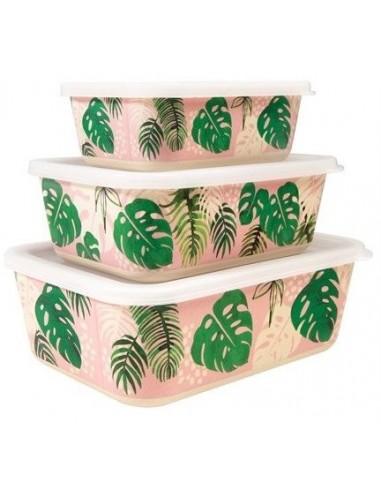 Bambukinės Dėžutės Maistui - Tropikai